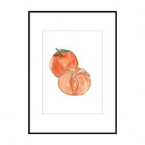 acuarela mandarina fruta